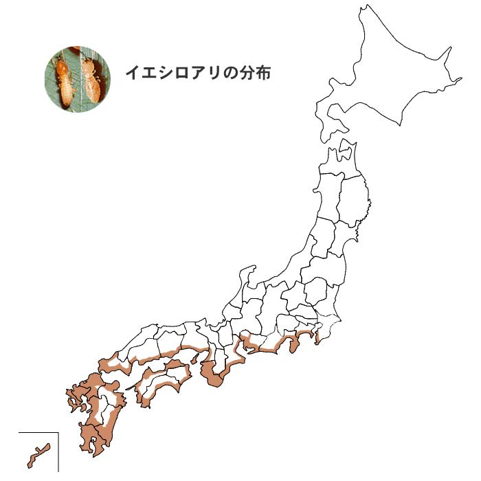 イエシロアリの分布図